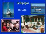 galapagos1