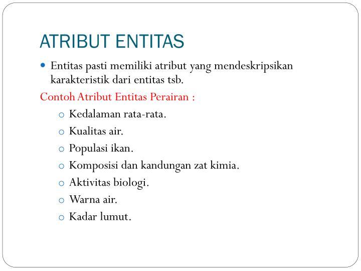 ATRIBUT ENTITAS