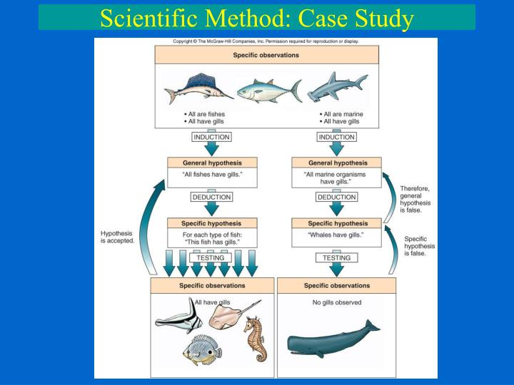 scientific method case study The case study method often involves simply observing what happens to, or reconstructing 'the case history' of a single participant or group of individuals (such as a school class or a specific social group), ie the idiographic approach.