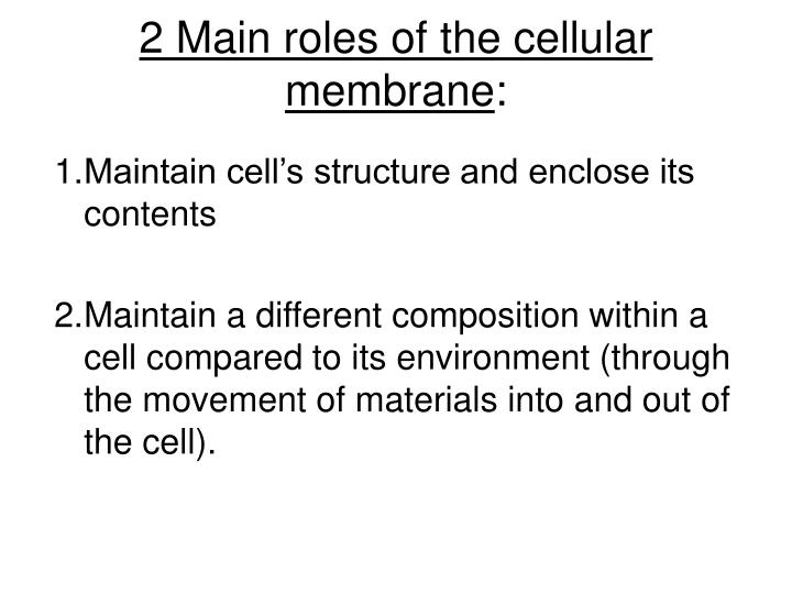 2 main roles of the cellular membrane