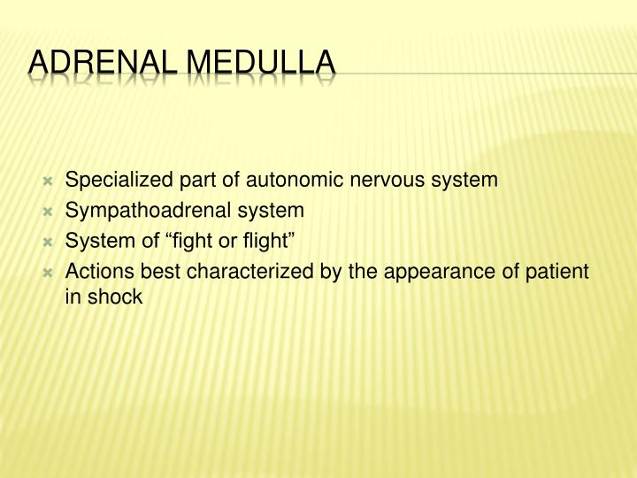 Specialized part of autonomic nervous system