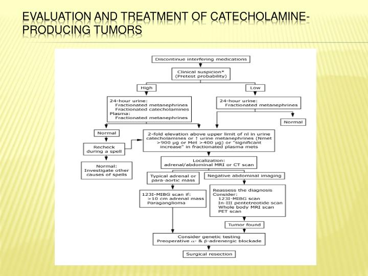 Evaluation and treatment of catecholamine-producing