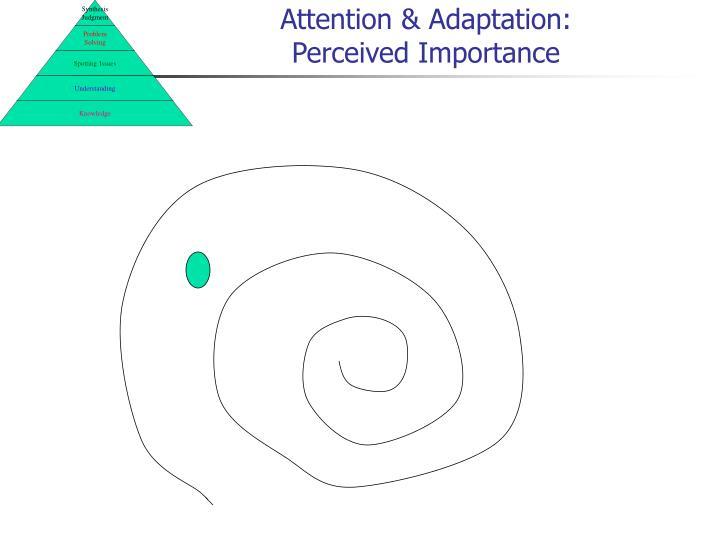 Attention & Adaptation: