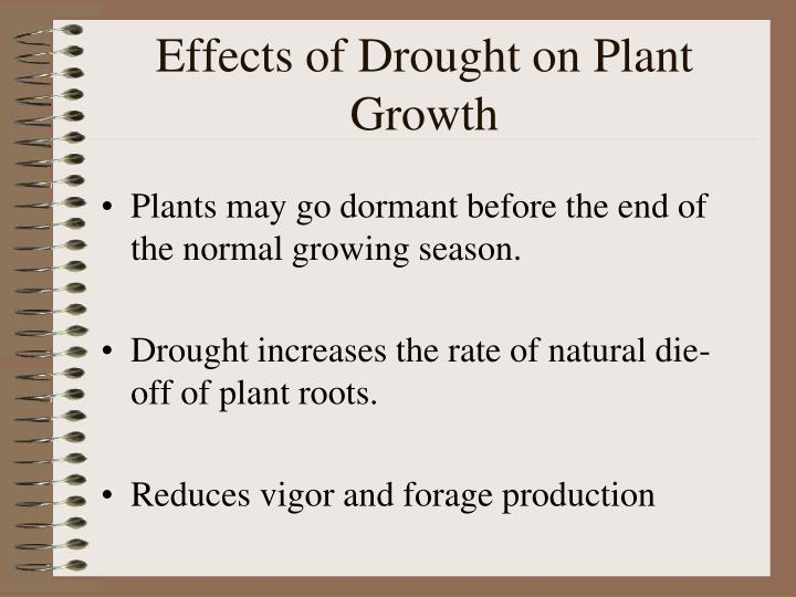 PPT - Planning for Drought PowerPoint Presentation - ID ...