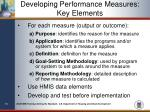 developing performance measures key elements