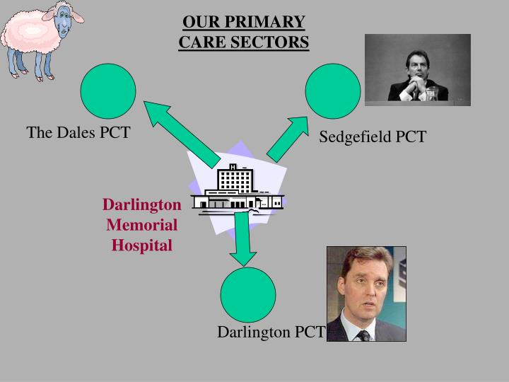 OUR PRIMARY CARE SECTORS