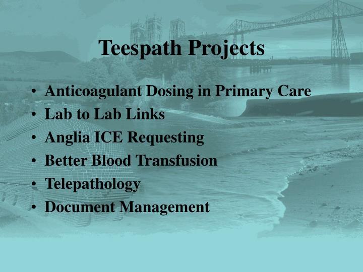 Teespath Projects