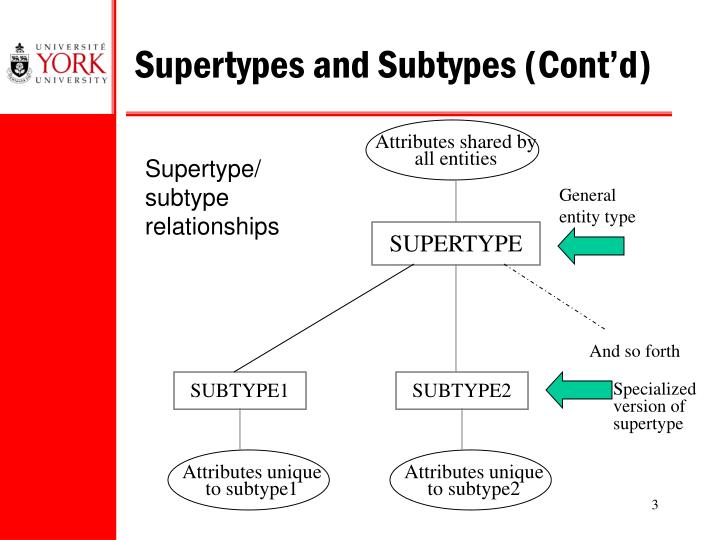 How are supertypes and subtypes transformed into tables