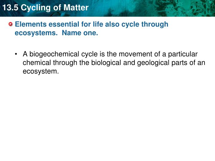 Elements essential for life also cycle through ecosystems.  Name one.