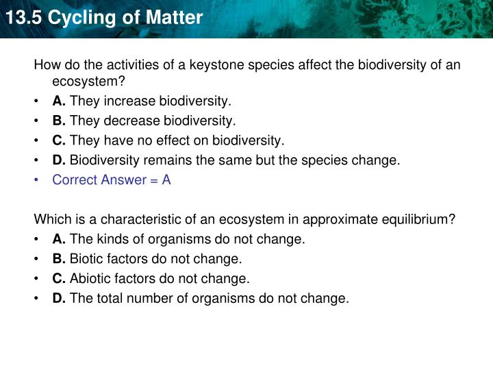 How do the activities of a keystone species affect the biodiversity of an ecosystem?