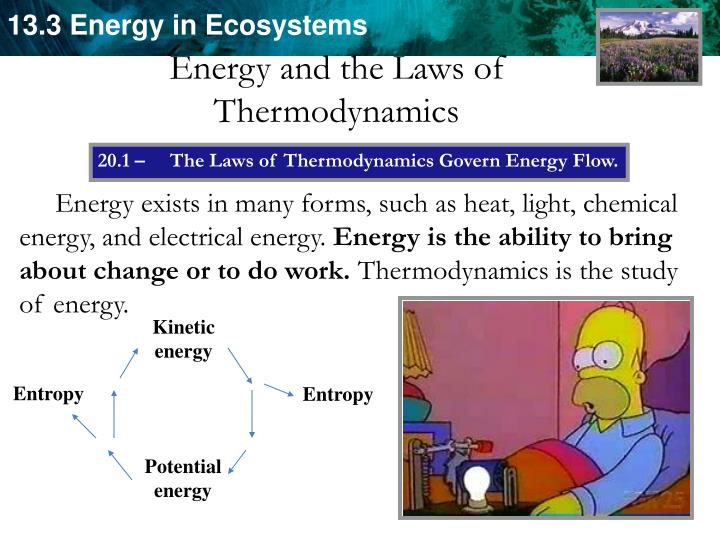 Energy and the Laws of