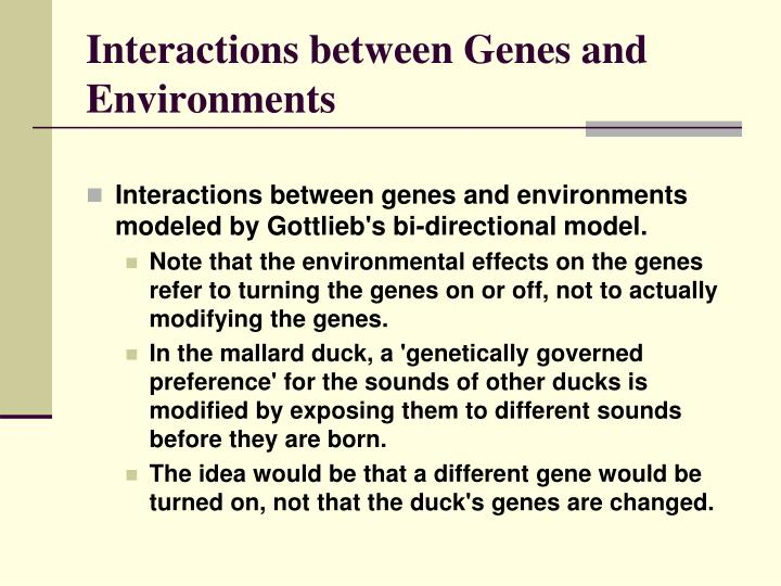 interaction between genes and behavior The complex interaction of genes and environment: the complex interaction of genes and environment: a model for homosexuality.