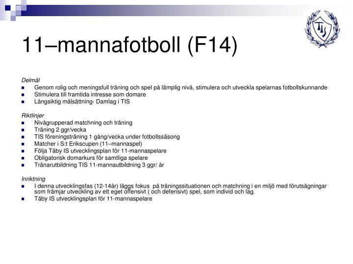 11–mannafotboll (F14)