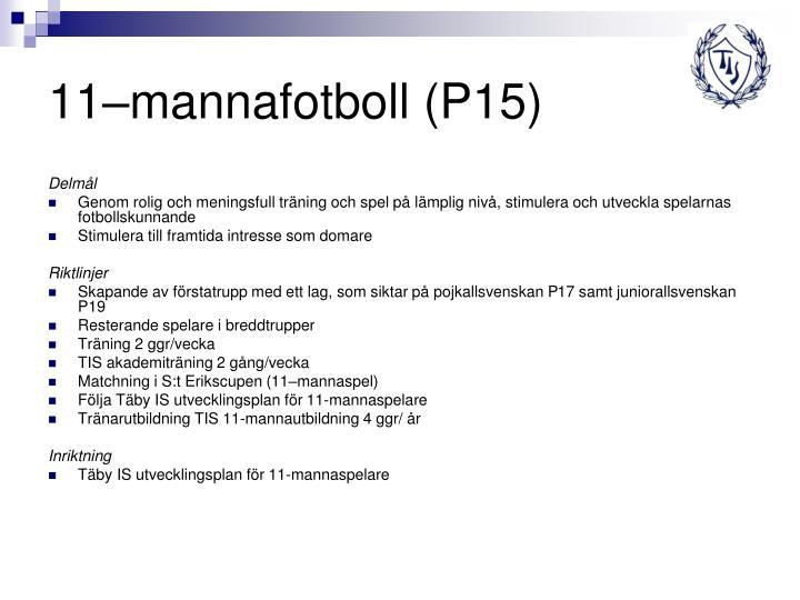 11–mannafotboll (P15)
