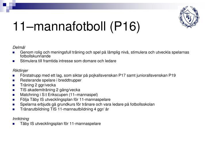 11–mannafotboll (P16)
