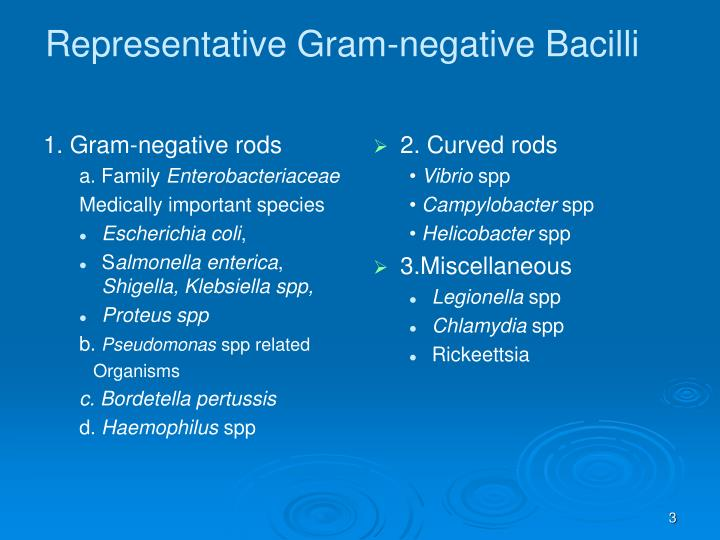 describe the basis of the gram Ex 4: gram stain study guide by vanessa_emerah includes 10 questions covering vocabulary, terms and more  on the basis of gram-stain reaction, can you distinguish species of:  describe at least two conditions in which an organism might stain gram variable.