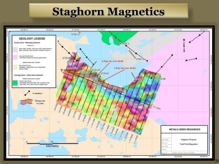 Staghorn Magnetics