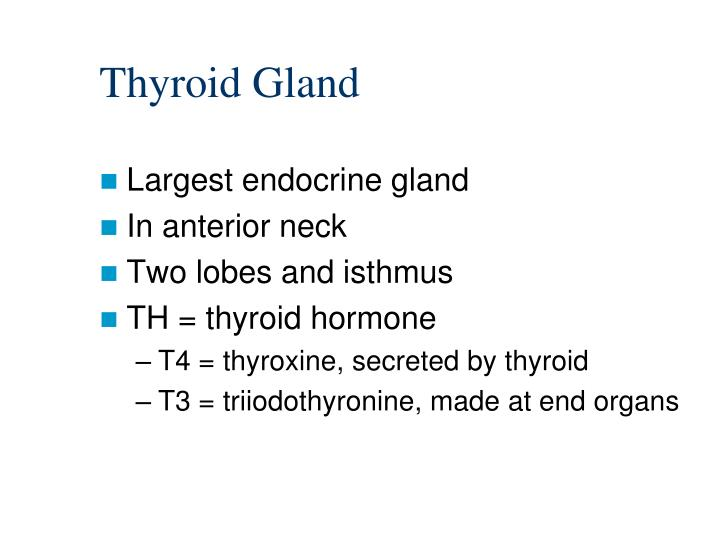 Ppt Endocrine System Powerpoint Presentation Id6125658