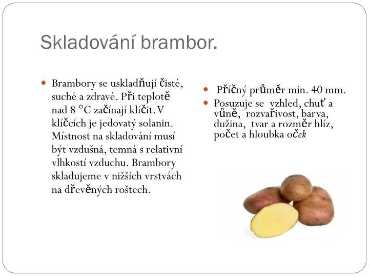 Skladování brambor.