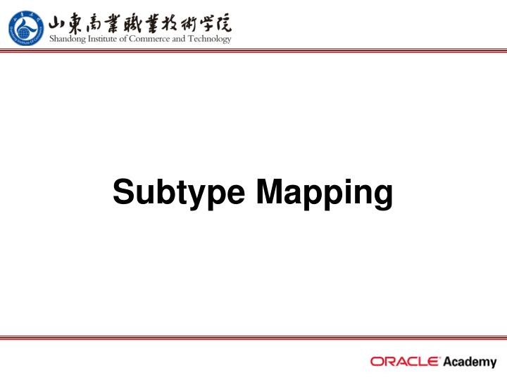 subtype mapping n.