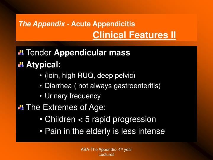 The Appendix -