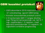 gbm kezel si protokoll