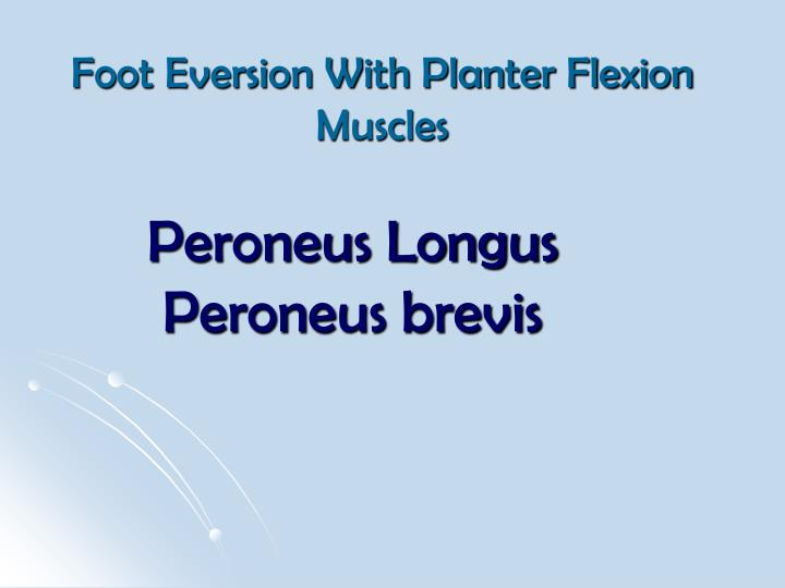 Foot Eversion With Planter Flexion Muscles