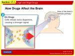 how drugs affect the brain1