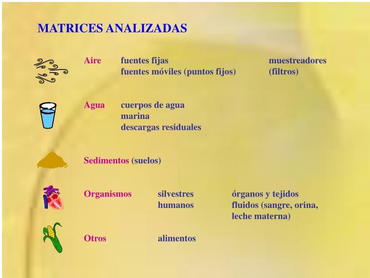 MATRICES ANALIZADAS