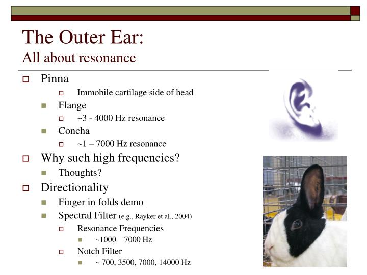The outer ear all about resonance