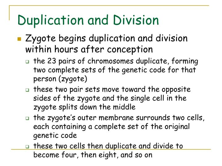 Duplication and Division