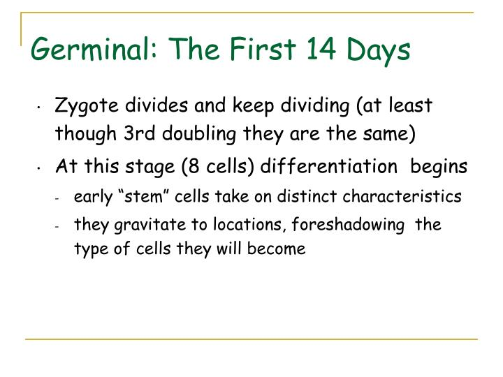 Germinal: The First 14 Days