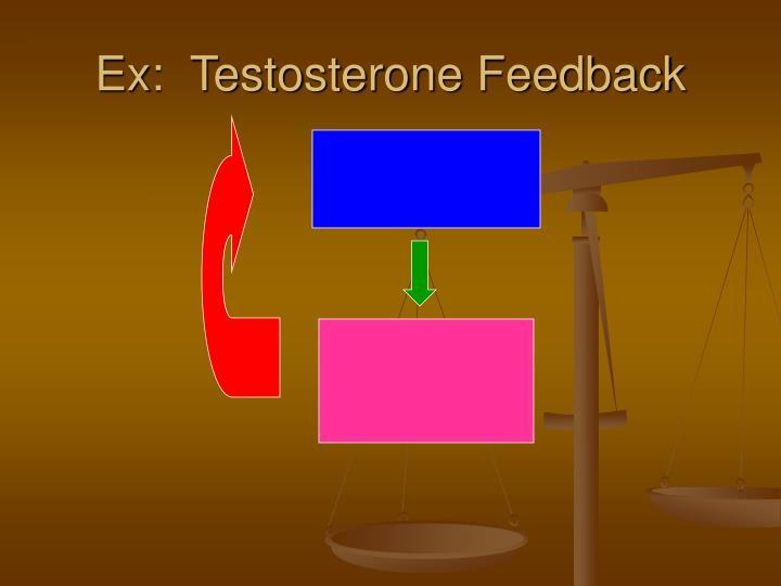 Ex:  Testosterone Feedback