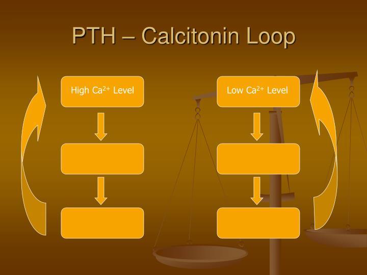 PTH – Calcitonin Loop