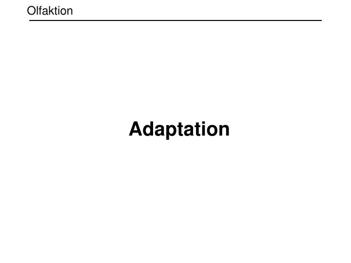 Olfaktion