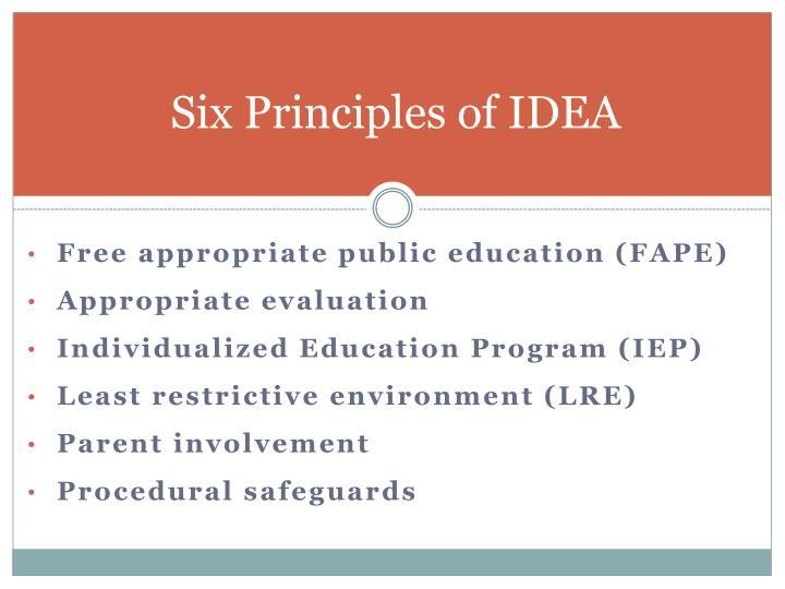 Six Principles of IDEA