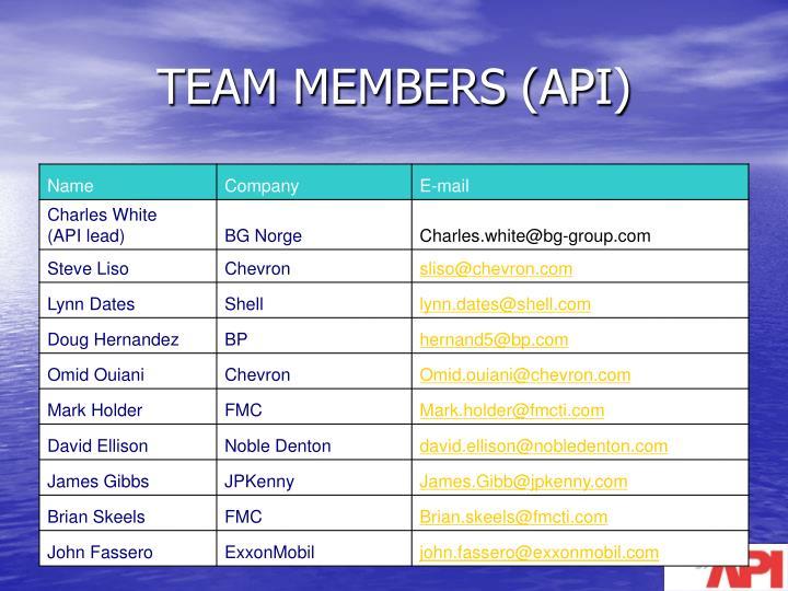 Team members api