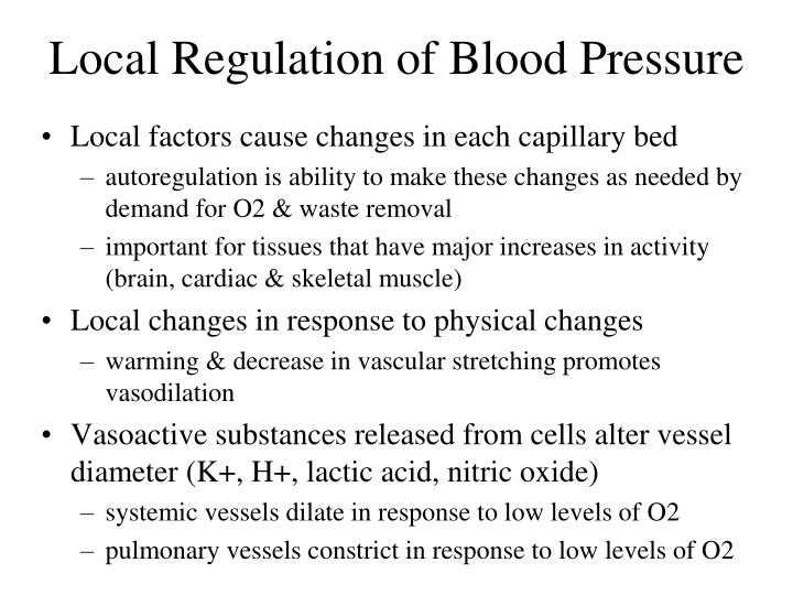 Local Regulation of Blood Pressure