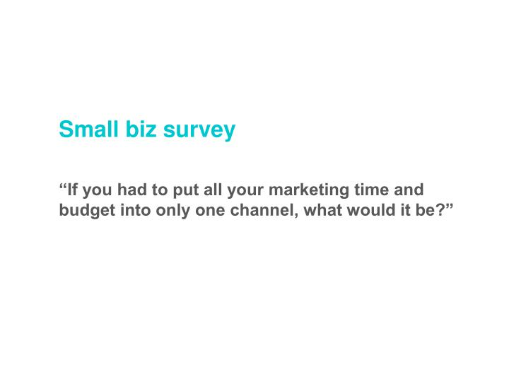 Small biz survey