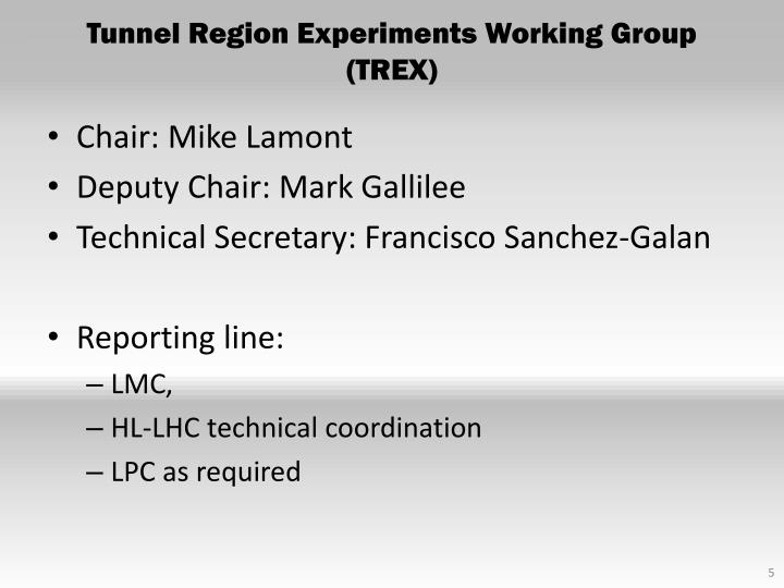 Tunnel Region Experiments Working Group (TREX)