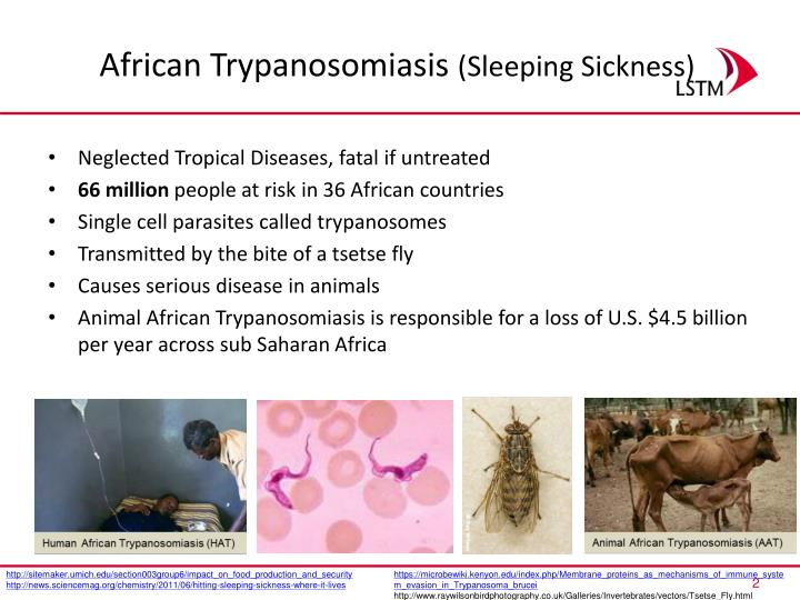 African trypanosomiasis sleeping sickness