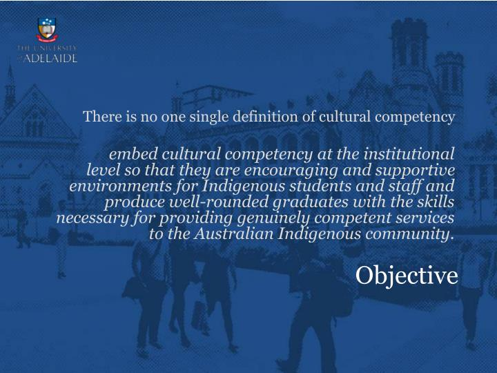 There is no one single definition of cultural competency