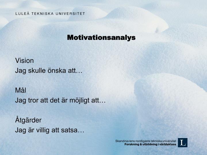 Motivationsanalys