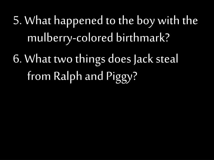 5. What happened to the boy with the mulberry-colored birthmark?