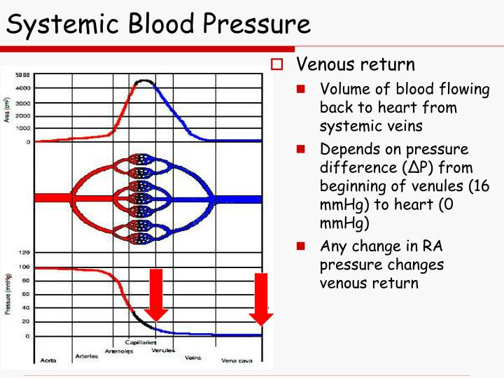 Systemic Blood Pressure