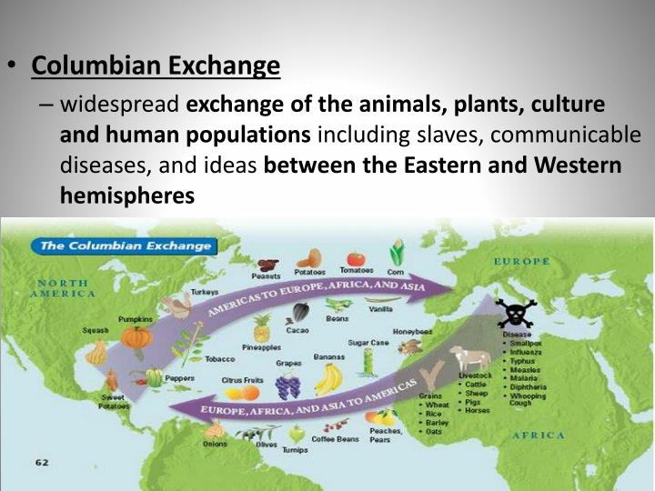 the columbian exchange Apush explained: columbian exchange get all the information you need to know why the columbian exchange changed the world (video & transcript.