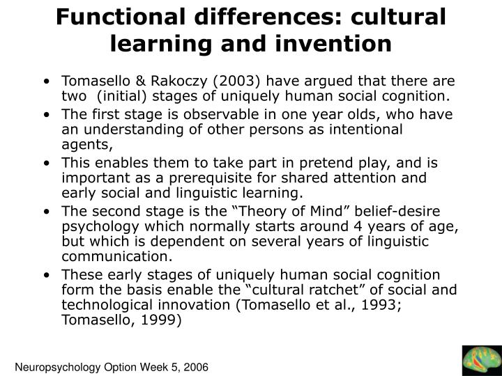 Functional differences: cultural learning and invention