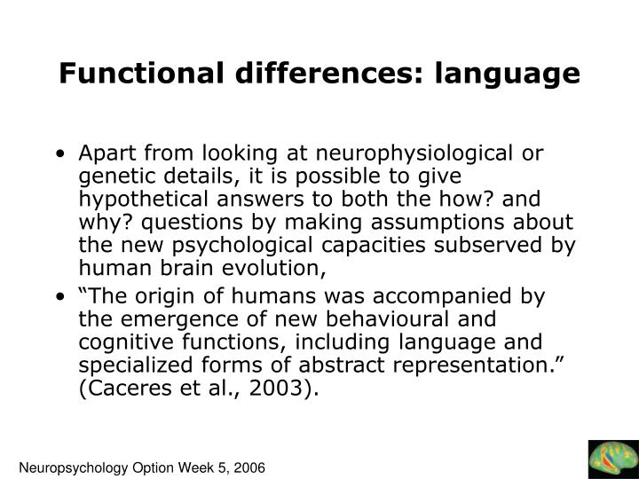 Functional differences: language