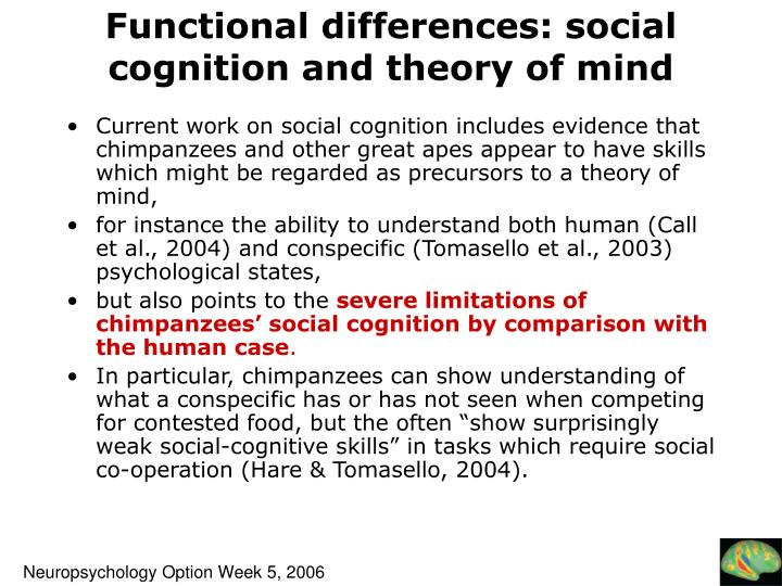 Functional differences: social cognition and theory of mind