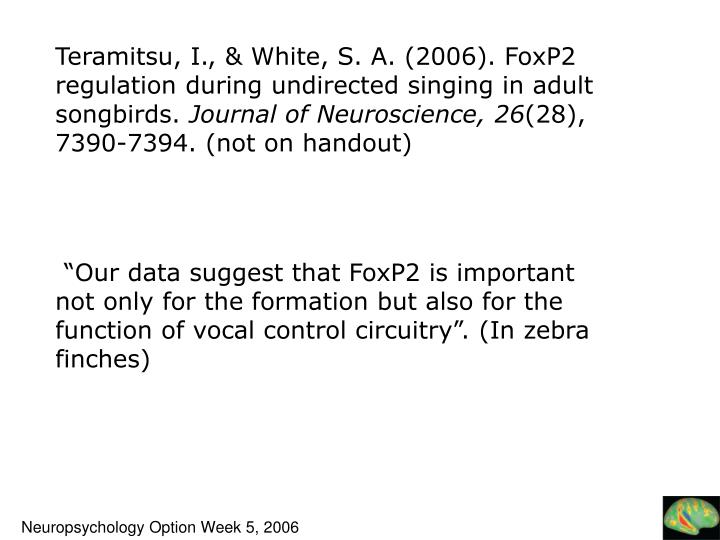 Teramitsu, I., & White, S. A. (2006). FoxP2 regulation during undirected singing in adult songbirds.